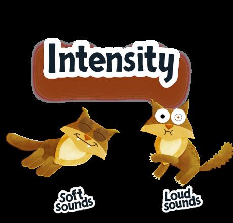 intensity_en